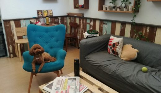 The Hound Cafe @ OUG – Dog Cafe with nice coffee and food in Cozy space